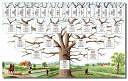 L'arbre informatif